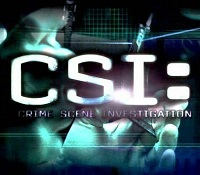 CSI Will Get Series Finale