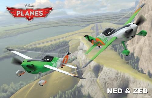 Planes NedZed