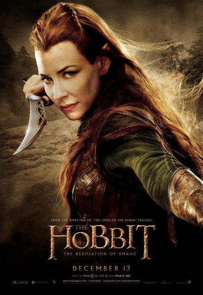 The Hobbit The Desolation of Smaug Poster 13