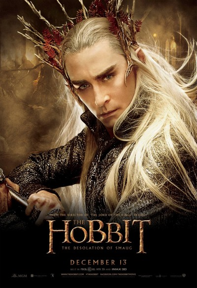 The Hobbit The Desolation of Smaug Poster 14