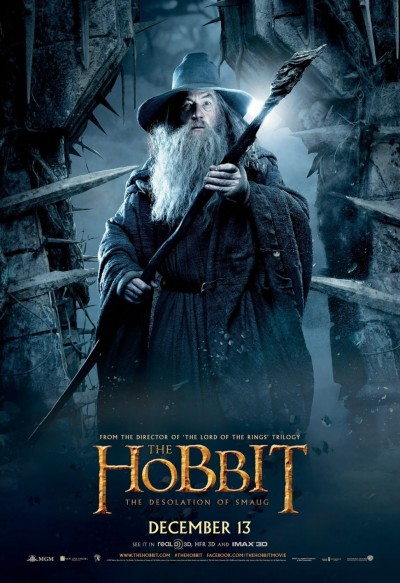 The Hobbit The Desolation of Smaug Poster 17