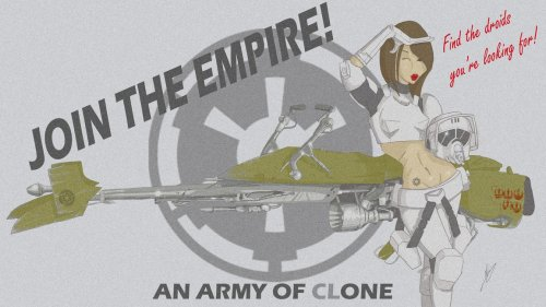 Star Wars Empire Recruitment Poster 14