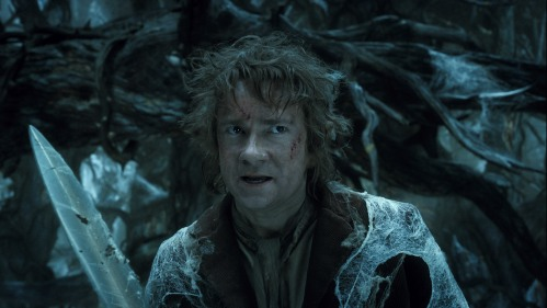 The Hobbit The Desolation of Smaug 18