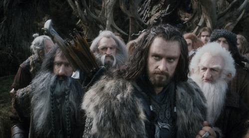 The Hobbit The Desolation of Smaug 23