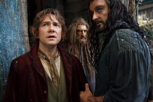 The Hobbit The Desolation of Smaug 4