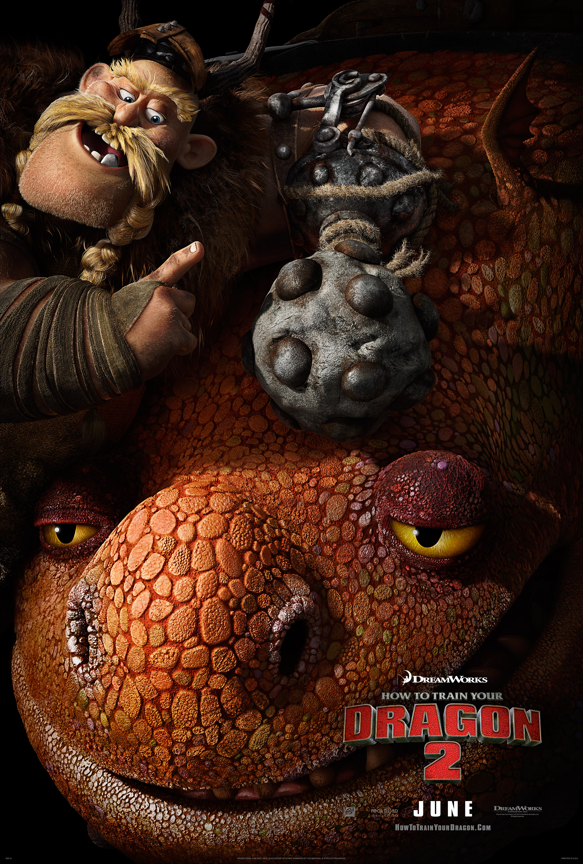 How To Train Your Dragon 2 Poster #6 | Reggie's Take.com