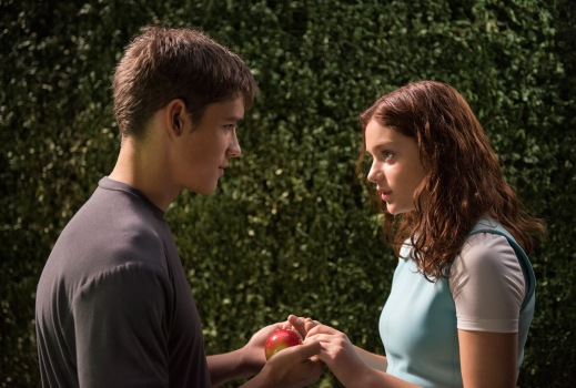 The Giver Image 6