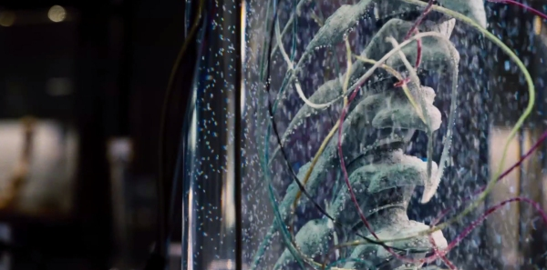 Jurassic World Image 11