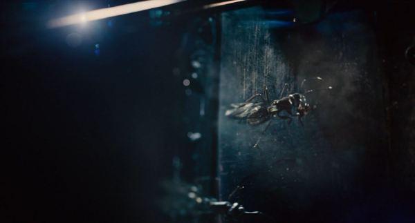 Ant-Man Image #29