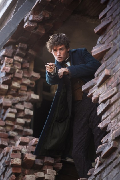 Fantastic Beasts and Where to Find Them Image #10