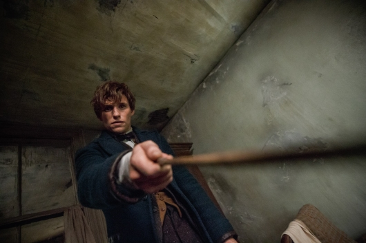 Fantastic Beasts and Where to Find Them Image #11