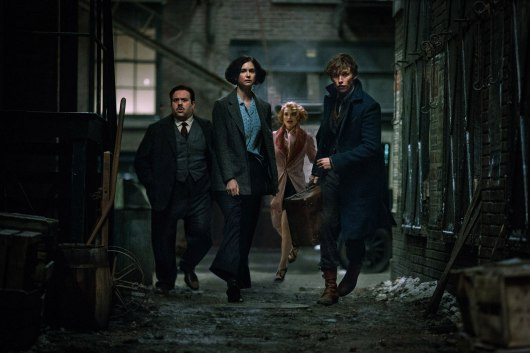 Fantastic Beasts and Where to Find Them Image #12