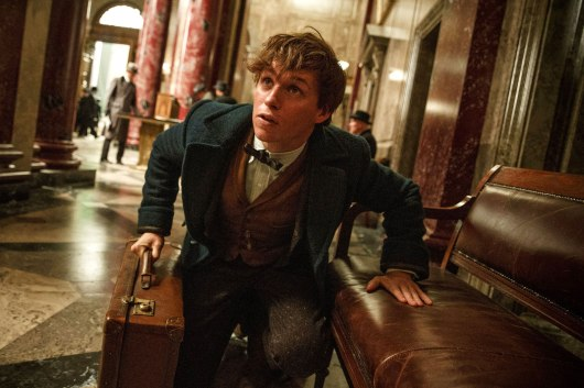Fantastic Beasts and Where to Find Them Image #5