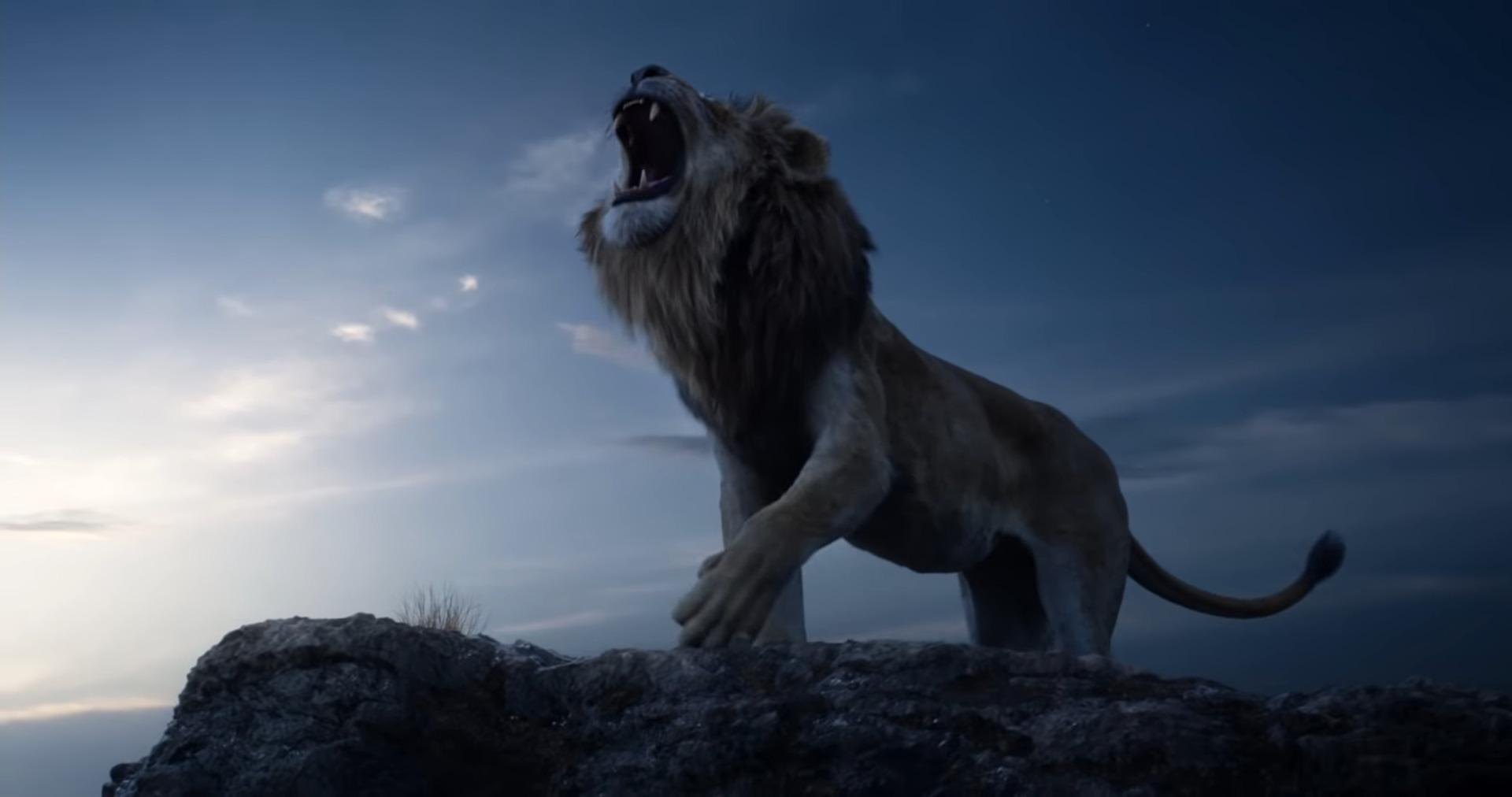 Congratulate, The lion king xxx words