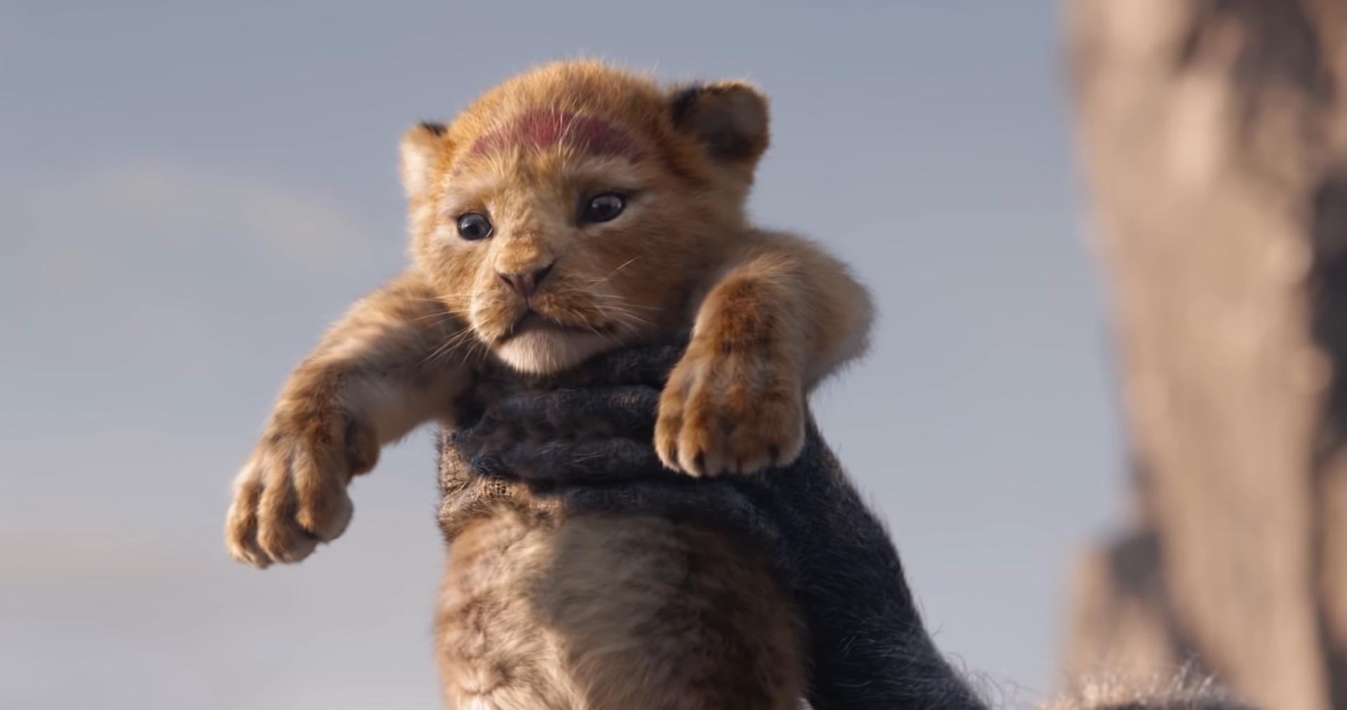 Authoritative answer, The lion king xxx